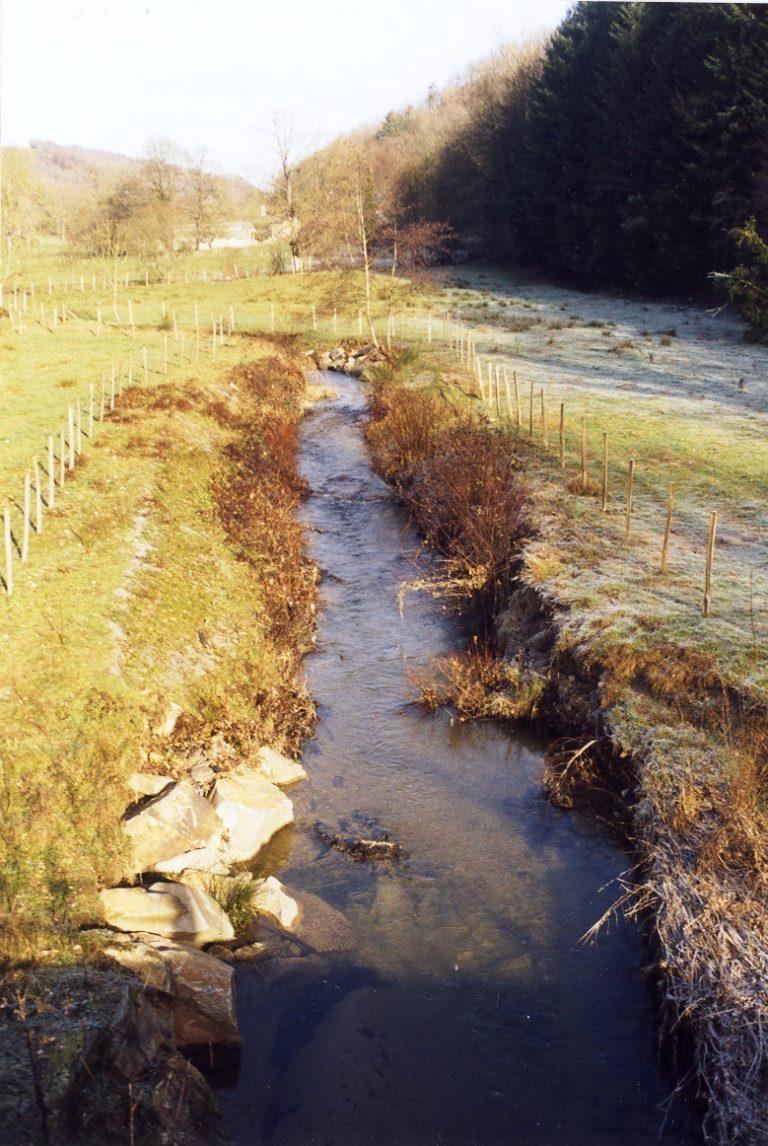 Le liort avant plantations en 2003