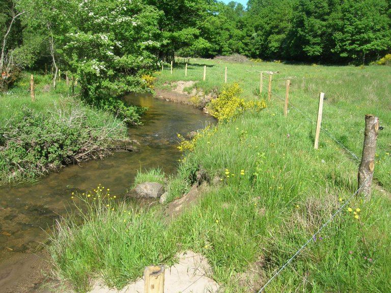 Vioulou clôtures et plantations