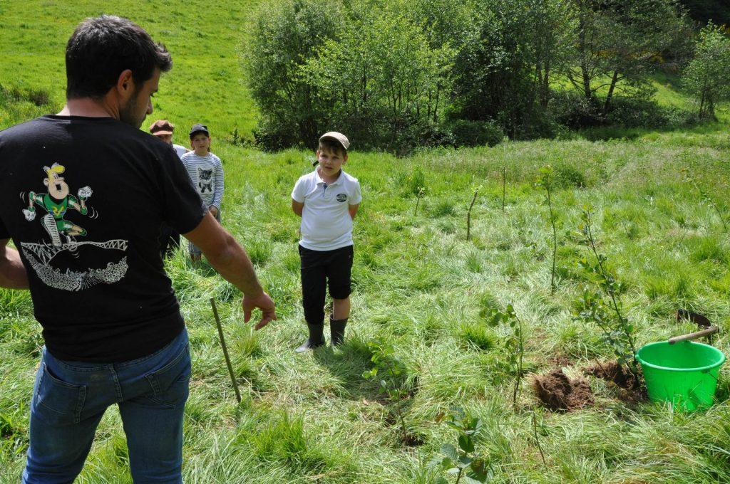 Réalisation de plantations avec les écoles